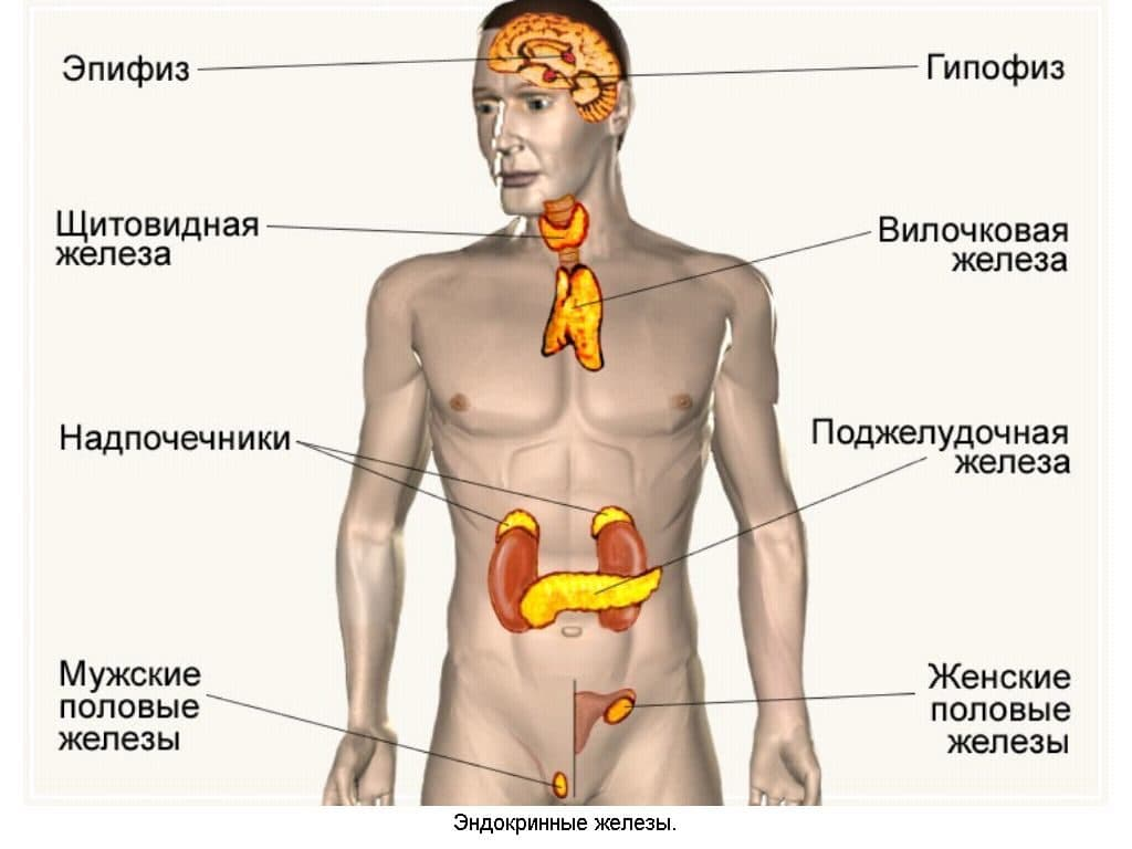 Эндокринная гипертензия