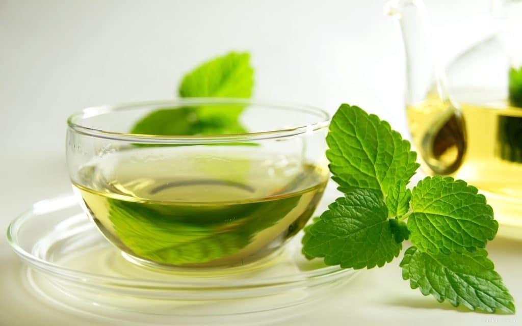 Зеленый чай с мелиссой при давлении