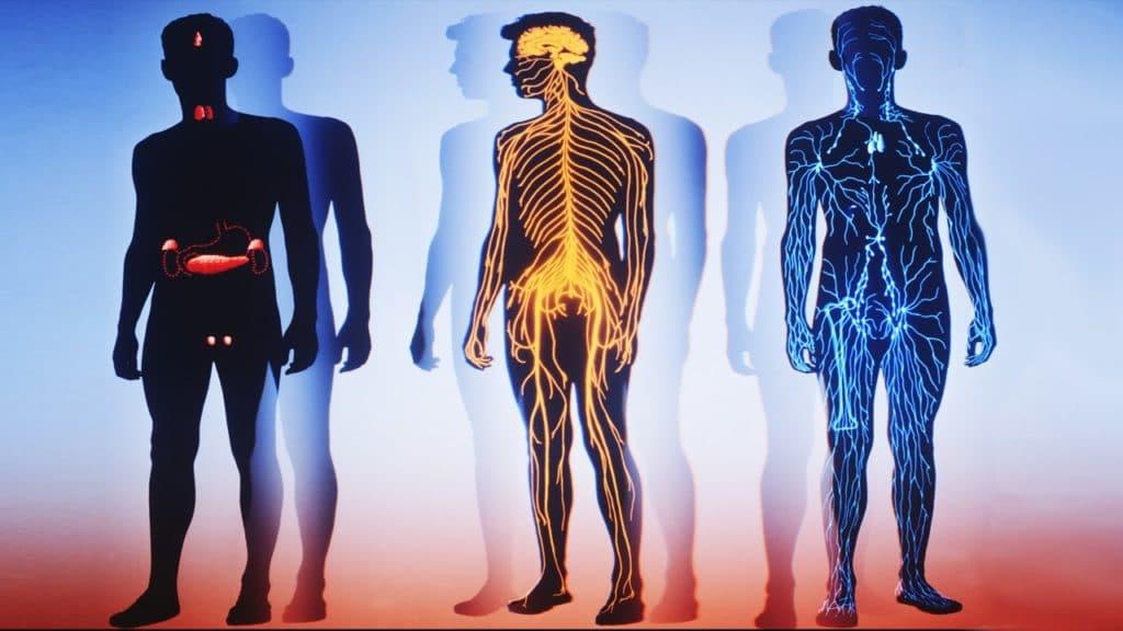 Вторичная артериальная гипертензия: причины и лечение