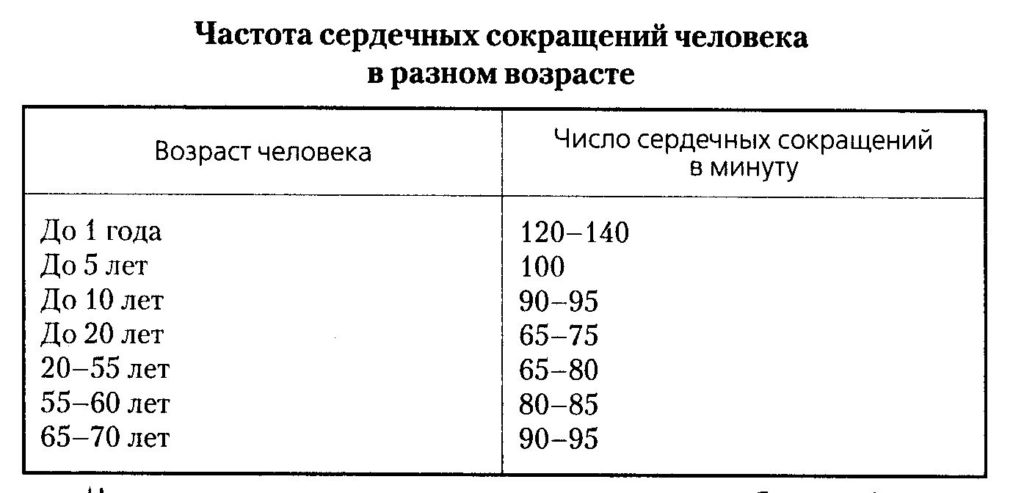 Норма частоты пульса по возрасту