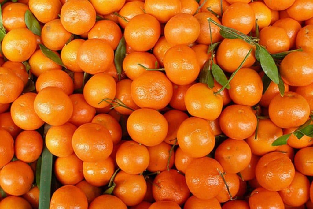 Мандарины повышают или понижают давление: как мандарины влияют на гипертонию