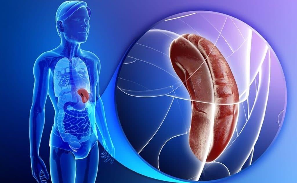 Увеличенная селезенка при портальной гипертензии