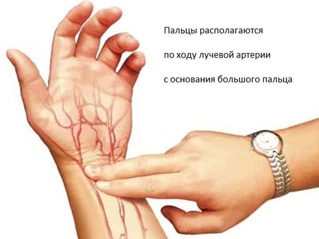 Определение артериального давления по пульсу
