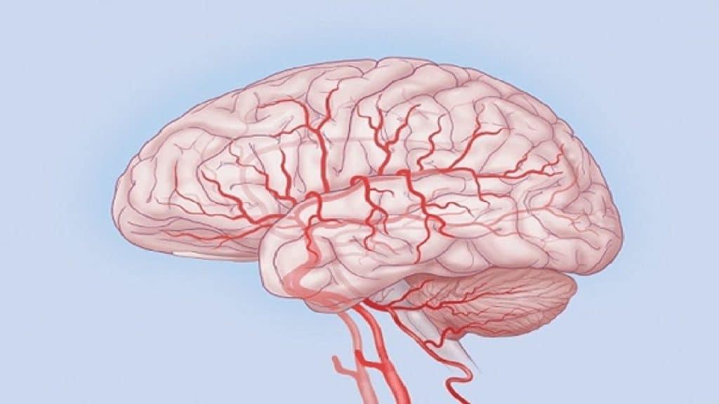 Ницерголин при нарушениях мозгового кровообращения