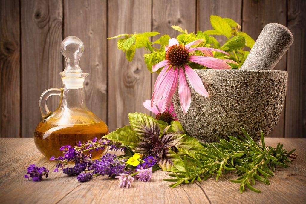 Лечение мерцательной аритмии травами
