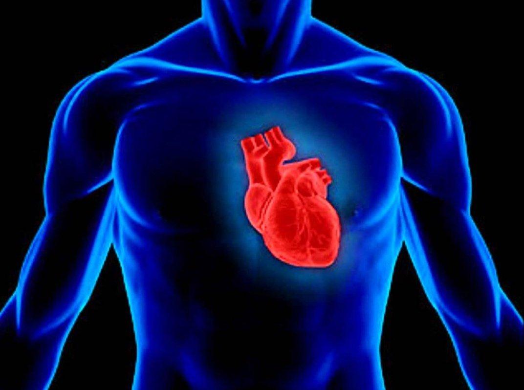 Результаты абляции сердца